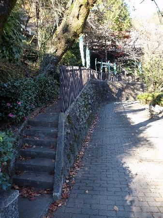 Tanna Shrine: 神社の入口階段
