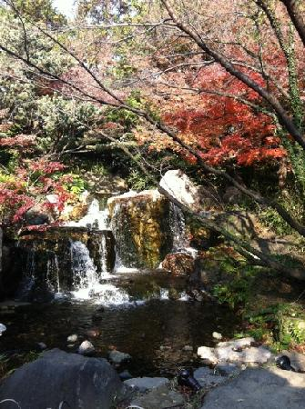 Shirotori Garden : no outono tudo fica ainda mais lindo.
