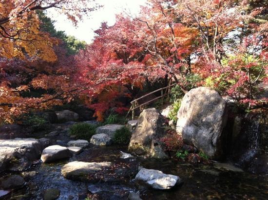 Shirotori Garden : agua cristalina