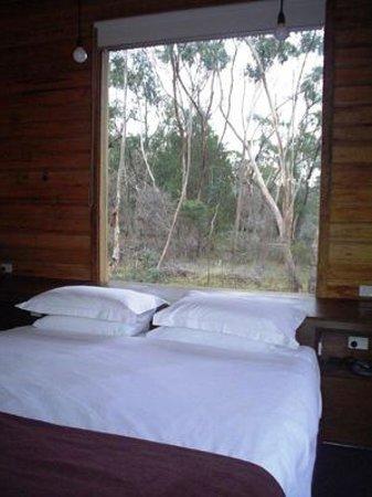 DULC Cabins