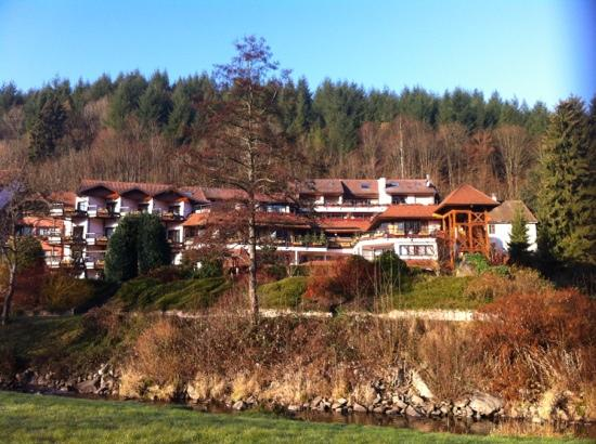 Hotel Julien: Vue de la Bruche