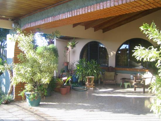 Alegria Bed and Breakfast: Lovely flowers and plants in a secure setting within a crouded city.