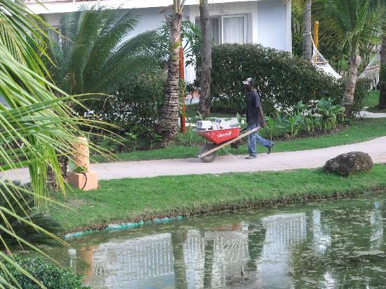 Excellence Punta Cana: hommes aux travail
