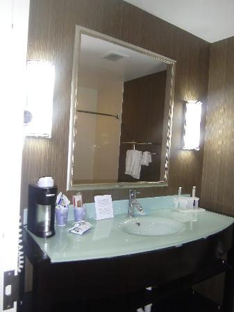 Holiday Inn Express Hotel & Suites West Coxsackie: Clean Modern Bathroom