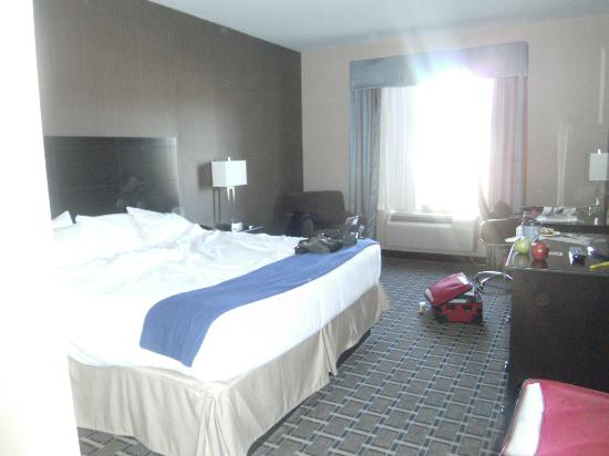 Holiday Inn Express Hotel & Suites West Coxsackie: Comfortable Bed
