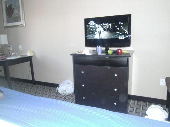 Holiday Inn Express Hotel & Suites West Coxsackie: Flat screen. Don't mind our mess.