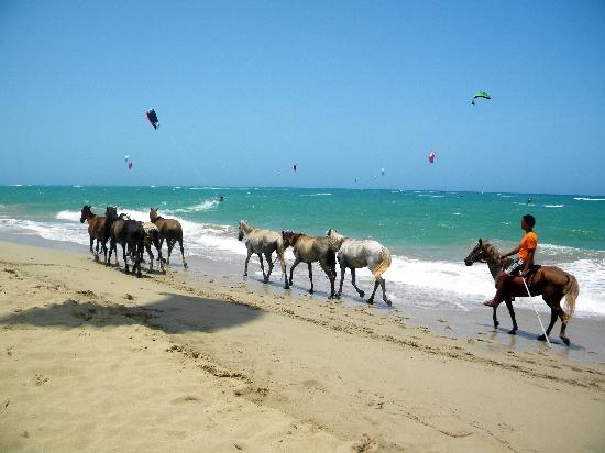 Kite Club Cabarete: beachgoers