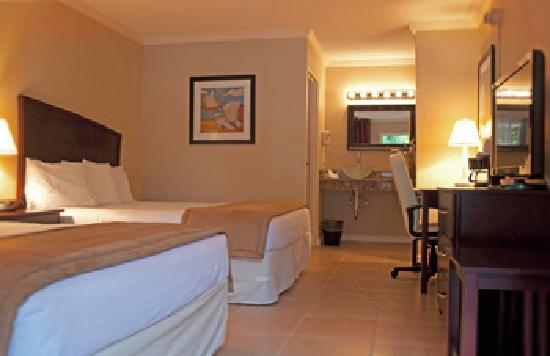 Universal Palms Hotel : Traditional Guest Room