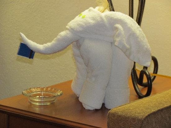 Hampton Inn & Suites Orlando International Drive North: Towel Elephant :)