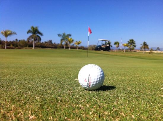 Mayan Palace Nuevo Vallarta Golf Course: excelente trato y buen Gren