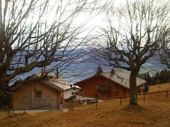 Limmathof: Lucern Lake