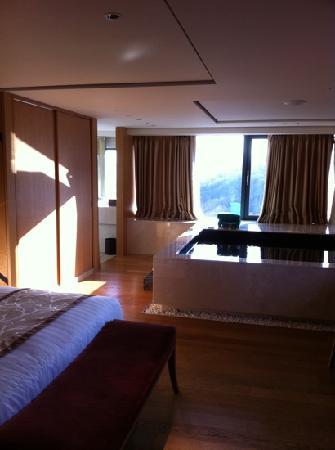 Banyan Tree Club & Spa Seoul : Premium Room