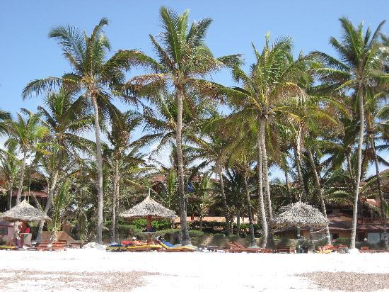 Crystal Bay Resort: la spiaggia del villaggio