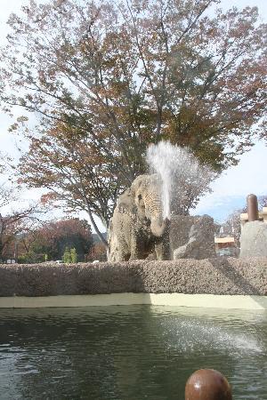 Kamine Park: ゾウが水をかけてきた!