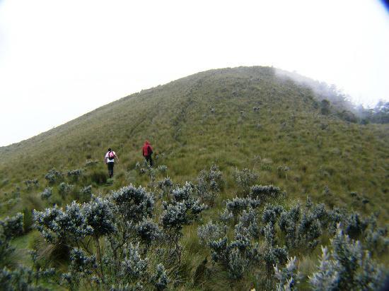 Pasochoa Forest Reserve : Falataba poco para llegar a la cima del Pasochoa