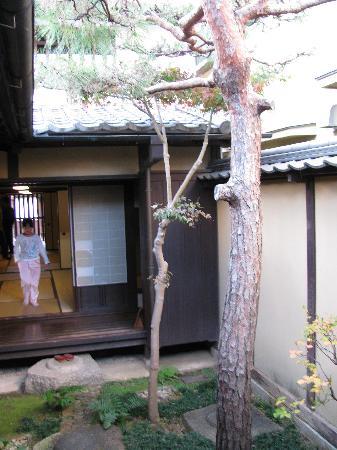 Naramachi Koshino Ie : Courtyard of Koshi-no-ie