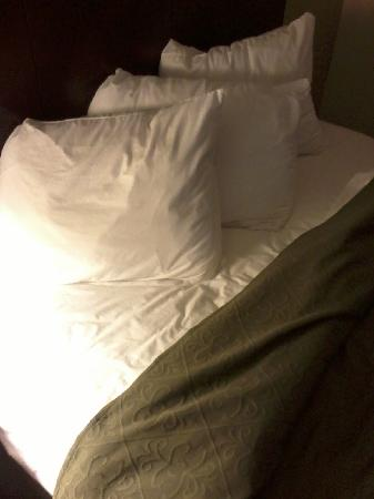 Quality Inn & Suites: Sheets and pilow cases not fresh
