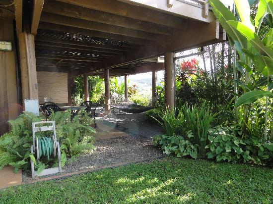 Maui Tradewinds照片