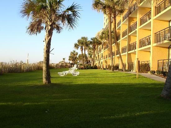 The Caravelle Resort: Beach Side/Back of Resort