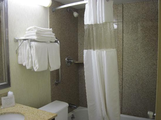 Quality Inn & Conference Center: The bathroom was newly renovated and quite nice.
