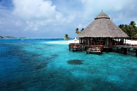 Beach conrad rangali picture of conrad maldives for Hotel conrad maldives rangali island resort