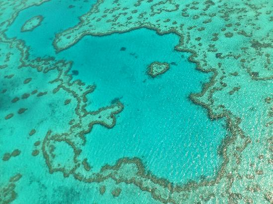 Airlie Beach, Australia: Heart Reef from Helicopter