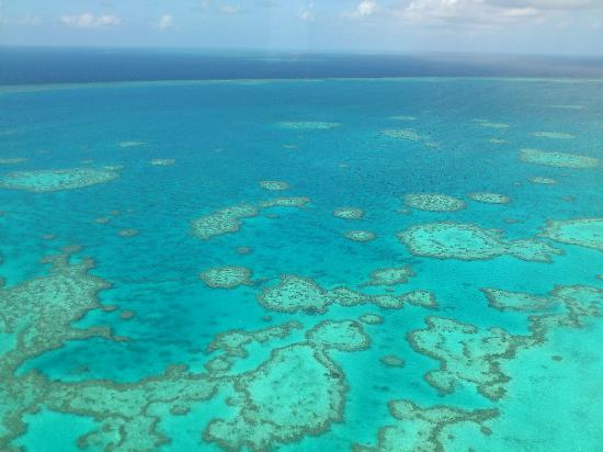 View near Heart Reef from Helicopter