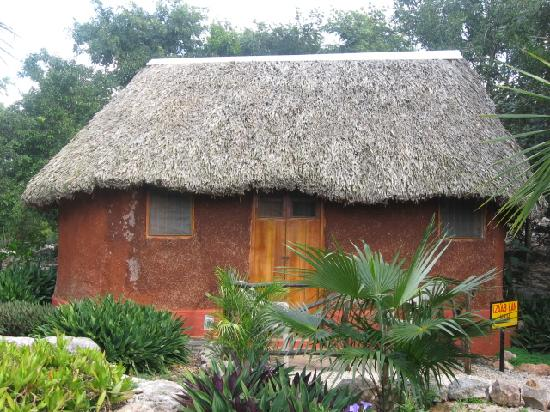 The Pickled Onion B&B / Restaurant: Mayan thatched-roof hut.