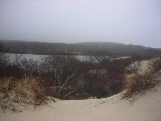 West Tisbury, Массачусетс: View above the beach.