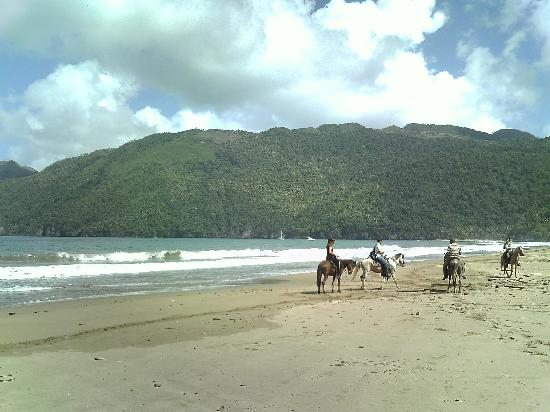 Rancho Tipico: Along the beach