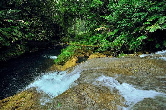 Mount Hope Waterfall: La cascade de Mount Hope