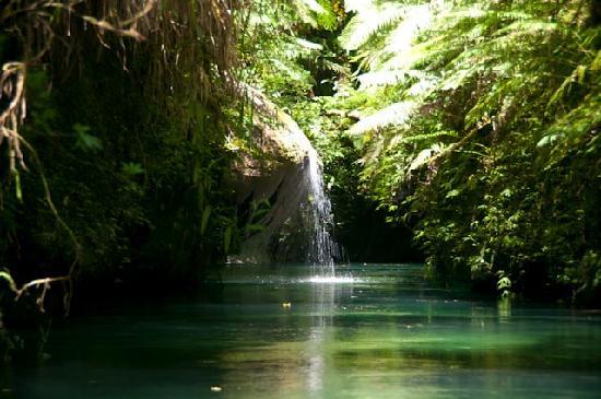 Mount Hope Waterfall: La Riviere