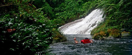 Mount Hope Waterfall: Se laisser flotter vers la cascade