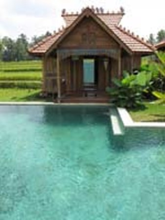 Hati Padi Cottages: getlstd_property_photo