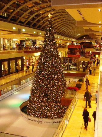 Albero Di Natale Washington Deluxe.Il Gigantesco Albero Di Natale Picture Of The Galleria Houston Tripadvisor
