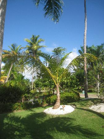 Meliá Caribe Tropical: Garten Melia Tropical