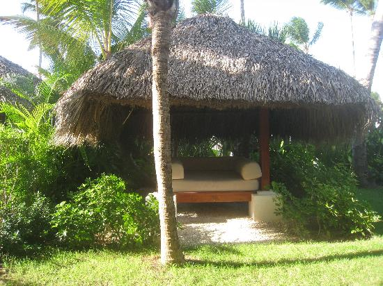 Meliá Caribe Tropical: Garten der Royal Beach Junior Suite