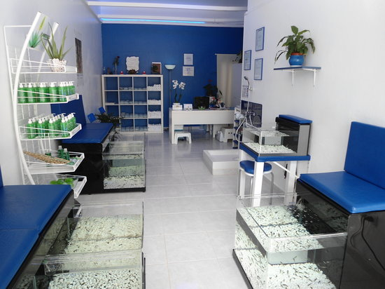 Dr. Fish - Fish Spa Boutique