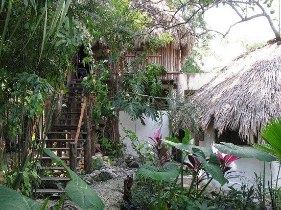 Aerolito Tulum: Casa Arbol is a treehouse on the second floor