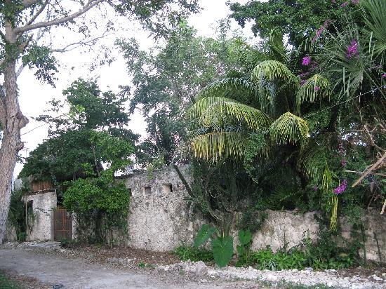 Aerolito Tulum: Aerolito Bed & Breakfast - view from outside