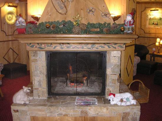 Hotel L'ours Blanc: open haard in de lounce