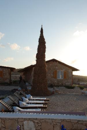 Hotel Spinguera Ecolodge: Natale