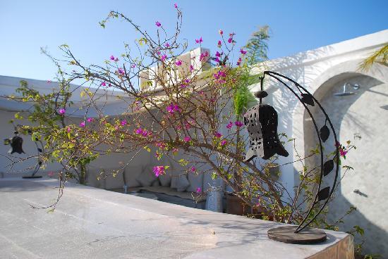 Riad Aguaviva: Detalle de la terraza