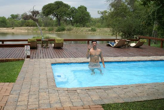 Gomo Gomo Game Lodge: Pool