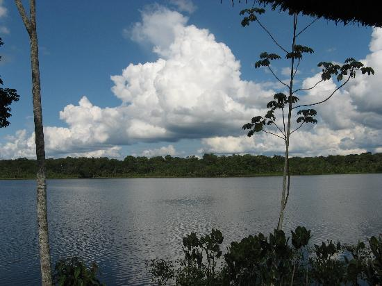 Napo Wildlife Center Ecolodge: View from our cabana