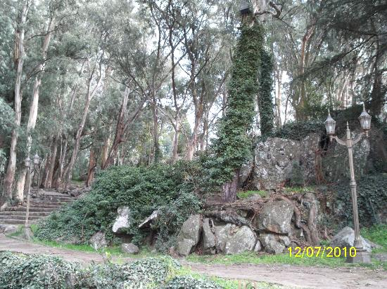Monte Calvario : Paisaje