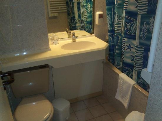 Inter-Hotel Le Sully : bathroom