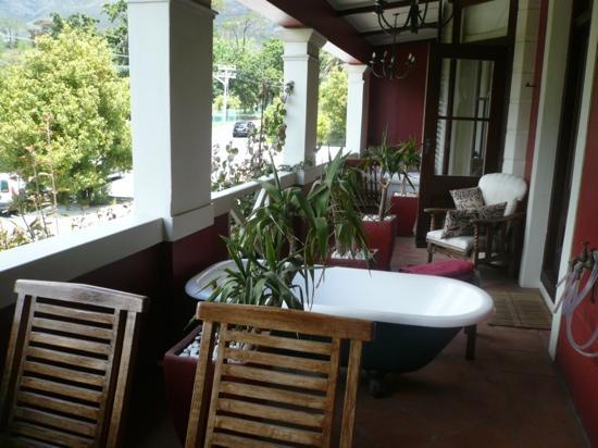 Cactus House: balcony