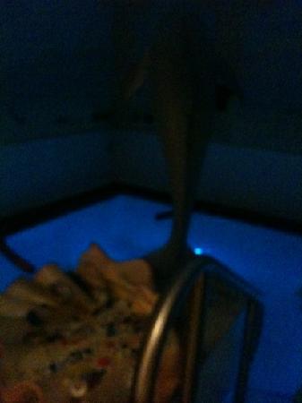 Falkensteiner Hotel & Spa Falkensteinerhof: piscina acqua salina e cromo terapia