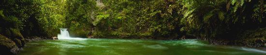 Okere Falls, New Zealand: The Amazing Kaituna River
